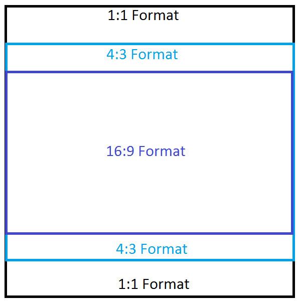 Format 16:9 h/öhenverstellbar Leinwand f/ür Beamer in Heimkino und B/üro viele Gr/ö/ßen 220x124 cm leichter Transport Mobile Stativleinwand verschiedene Formate